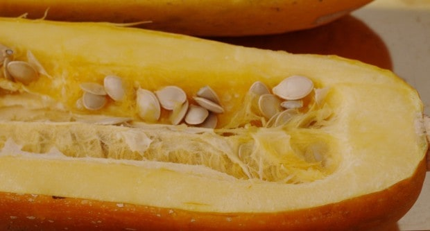 spahetti squash cut with seeds