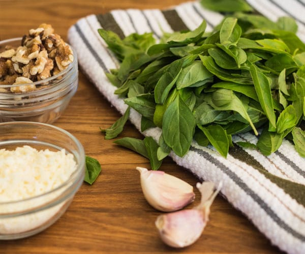 ingredients for Easy Basil Walnut Pesto | Letty's Kitchen