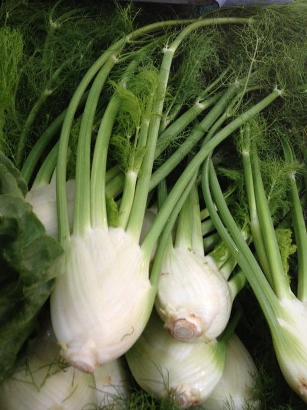 Fennel for Fennel, Orange and Pickled Onion Salad