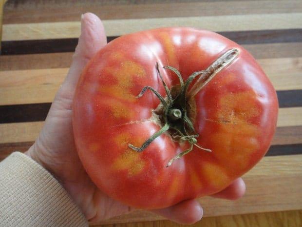 heirloom tomato for Caprese Veggie Patties with Basil Arugula Pesto
