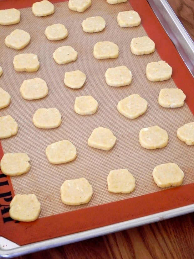 ready to bake logs Cornmeal Cheddar Cheese Coins