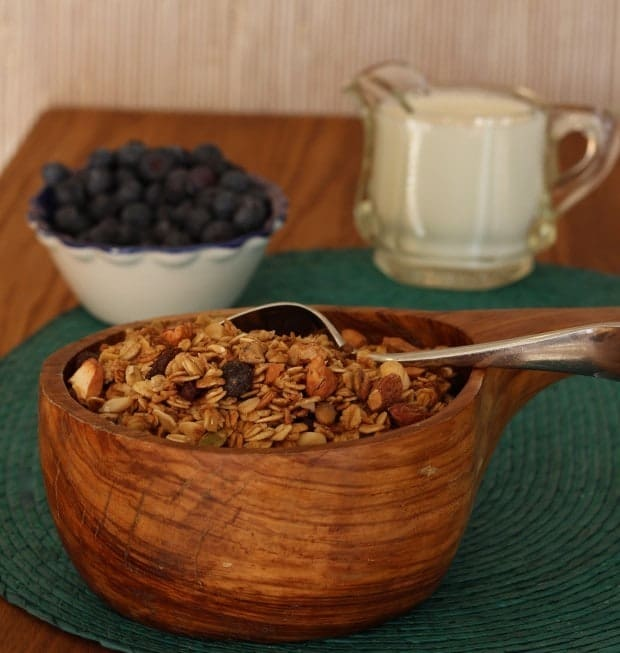 granola in bowl with bowl of blueberries and pitcher of milk in background