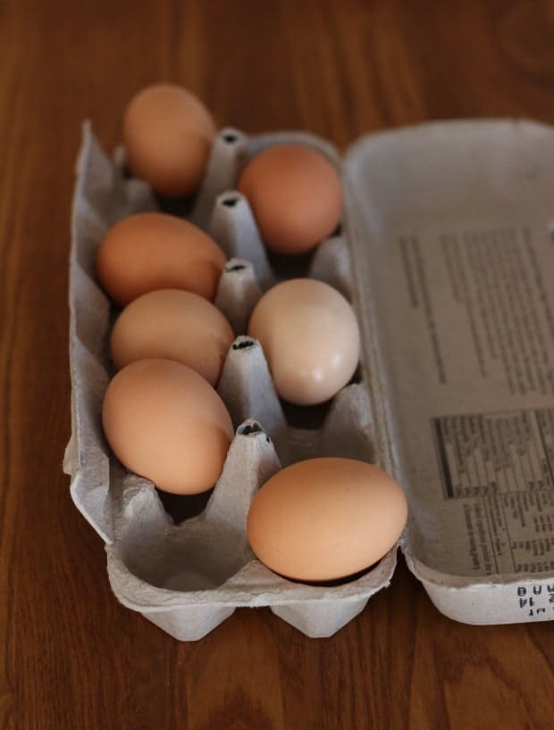 Eggs on their side in carton