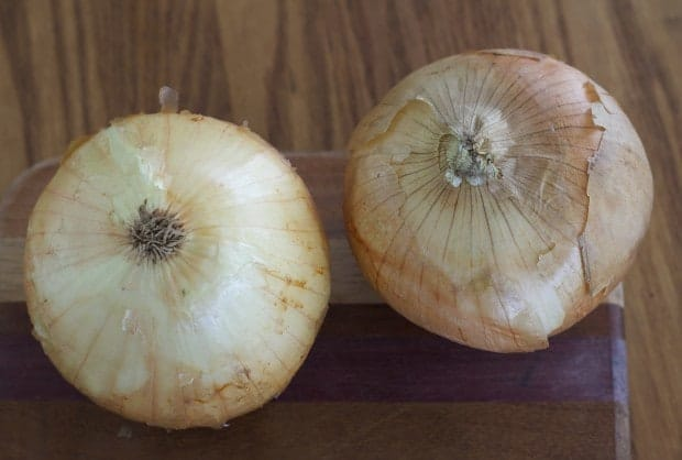 onion root vs top for Cinnamon Onion Flowers with Maple Roasted Walnuts | Letty's Kitchen