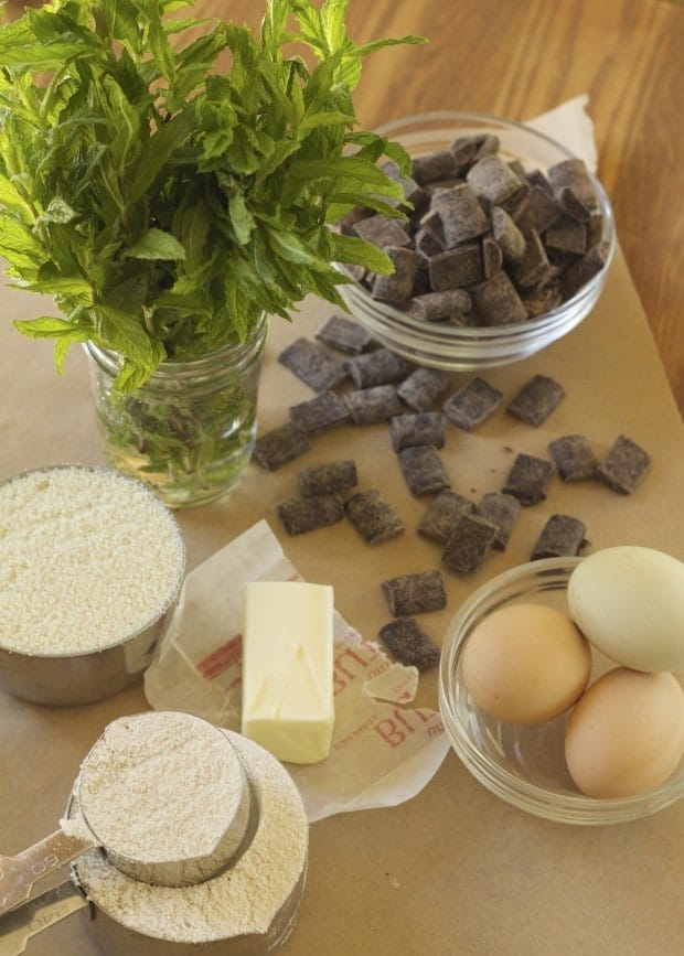 ingredients for Chocolate Mint Cookies