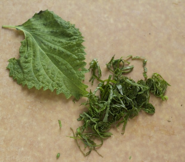 Shiso leaves, whole and cut for Brown Rice Shiso Sushi Salad