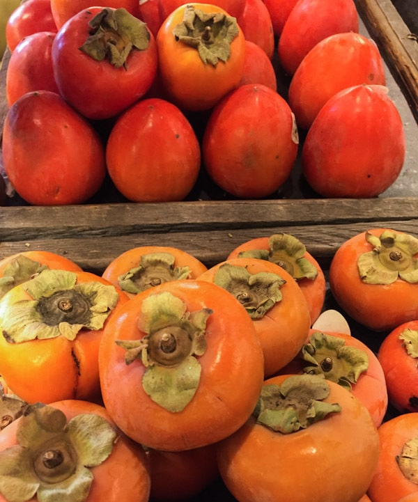 Display of Fuyu and Hachiya Persimmons for Easy Persimmon Tart with Pecan Crust | Letty's Kitchen