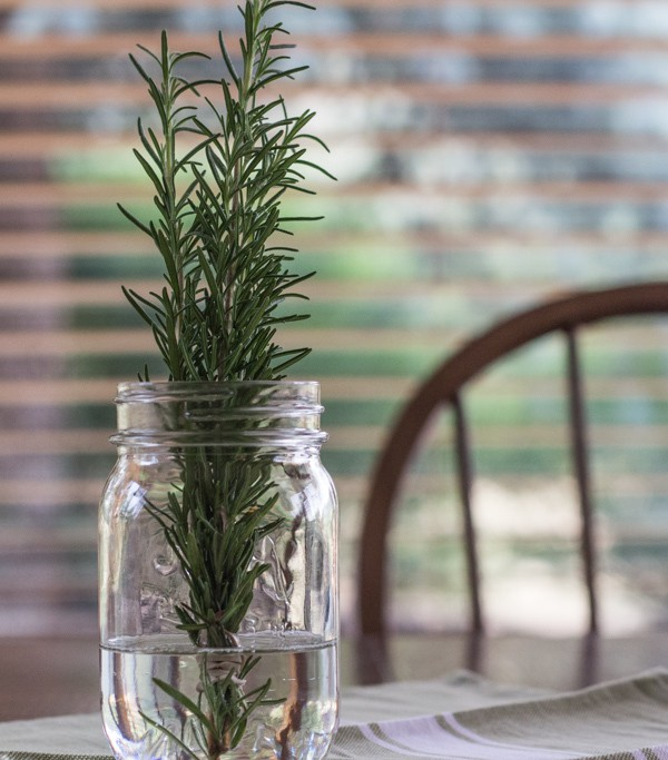 fresh rosemary for Easy Whole Wheat Rosemary Focaccia | Letty's Kitchen